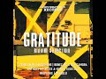 Gratitude Riddim Mix (Full)Feat. Gentleman, Anthony B, Konshens (Irievibrations Records) (Dec. 2017)