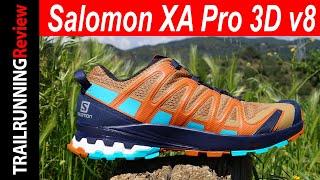 Salomon XA Pro 3D v8 Review - Actualización de un clásico del Trail Running