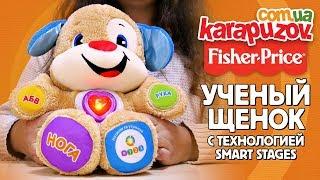 Розумне цуценя Fisher-Price Smart Stages DKK14 українською мовою - інтерактивна розвиваюча іграшка