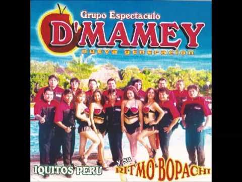 El Baile D' Mamey - Grupo espectáculo D' Mamey