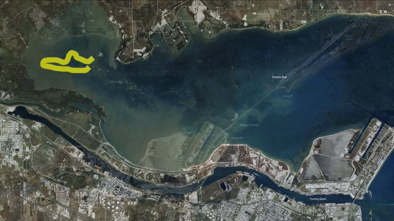 Texas fishing tips fishing report june 22 2017 corpus for Fishing report corpus christi texas
