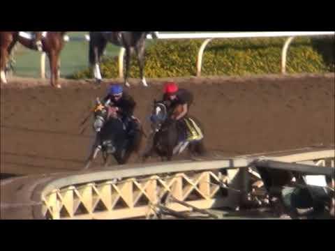 original Intent(outside horse) Shivermetimbers(inside horse) 10/4/17 Santa Anita