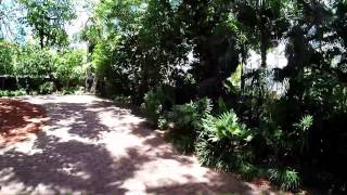 Ernest Hemingway Home and Museum in Key West with GoPro Hero3+