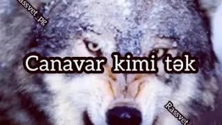 Soxucu sözler (canavar)