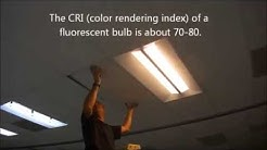 Commercial LED Lighting Retrofit Using Cree CR24 Tampa Florida