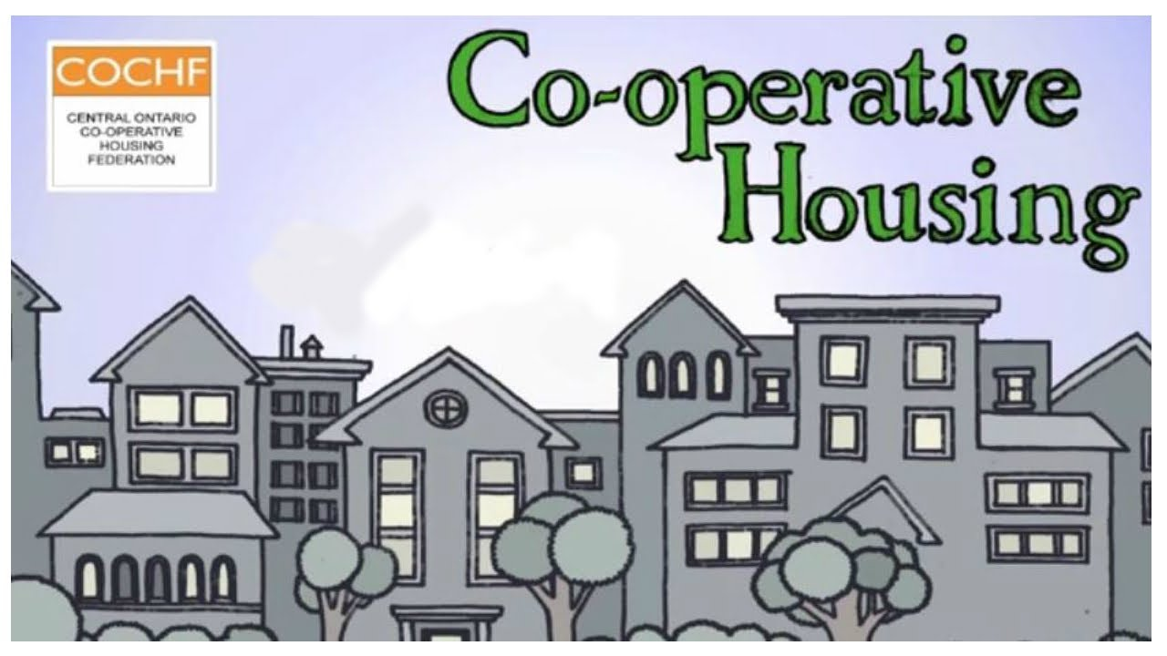 how to make a cooperative