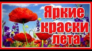 """""""Мой прекрасный сад """"(часть 1-я) релакс"""