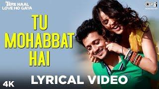 Download lagu Tu Mohabbat Hai Lyrical - Tere Naal Love Ho Gaya | Atif Aslam, Monali, Priya | Riteish, Genelia