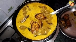 Fish Curry With Indian Herbs & Spices | World Famous Indian Food