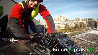 Kolcenaptaki.pl - zabezpieczenia przeciw ptakom