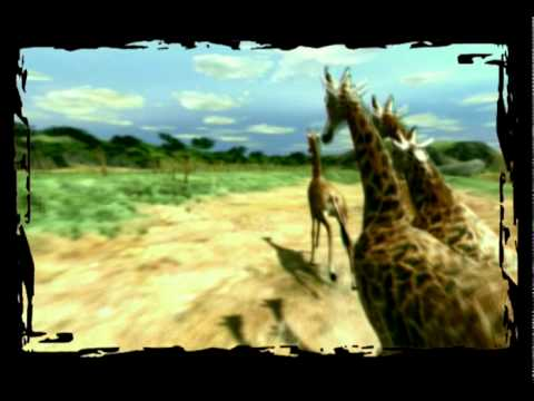 Wild Earth Trailer (Windows PC)