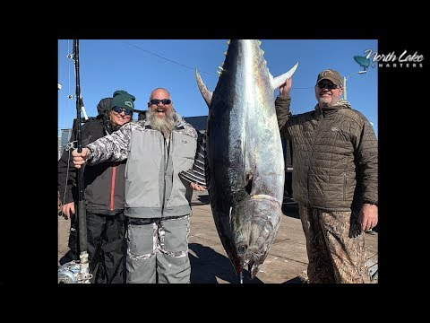 Giant Bluefin Tuna Fishing Prince Edward Island Canada North Lake Charters