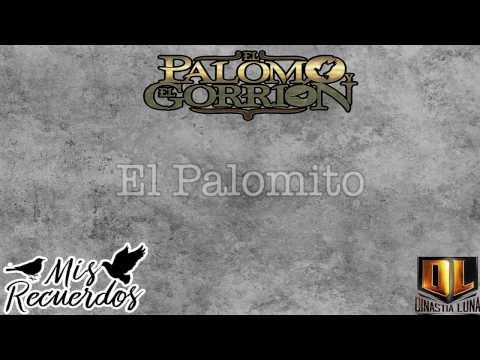 El Palomo y El Gorrión - El Palomito (Video Lyric)