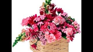 доставка цветов по одессе свадебные букеты одесса купить цветы оптом цены недорого