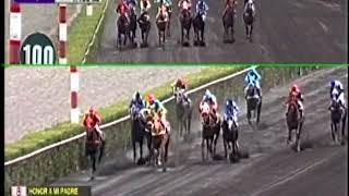 Vidéo de la course PMU PREMIO PARQUE CENTRAL