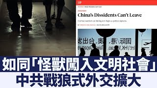 中共「流氓治理」蔓延到外交 多國發出中國旅遊警告|新唐人亞太電視|20190819