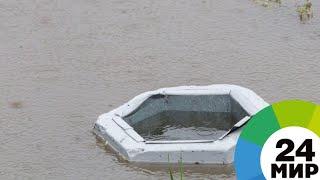 Ливни обрушились на Индию: северные штаты уходят под воду - МИР 24