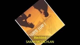 Sarah McLachlan - BLACKBIRD