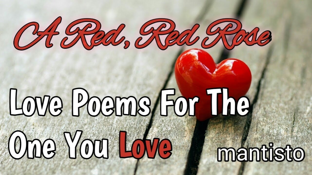 Beautiful & Romantic Short Love Poem / A Red Red Rose