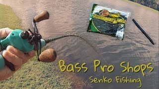 Classic Senko Bass Fishing: Golf Course Ponds!