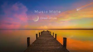깊은 수면을 위한 편안한 음악☁잠잘때 듣는 음악,불면증…