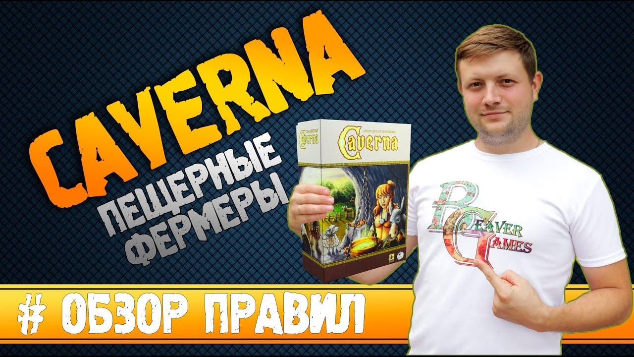 Настольная игра агрикола по выгодной цене в минске в интернет-магазине «игромастер». Акции и скидки.