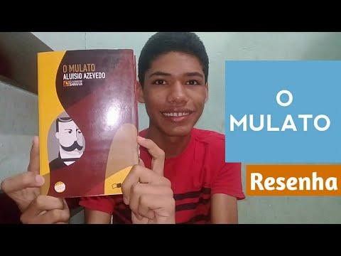 livro:-o-mulato-(aluísio-azevedo)-|-lendo-e-querendo