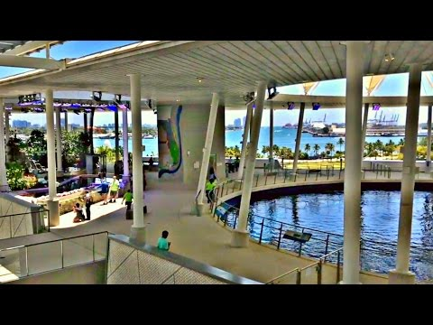 Checking out the NEW Miami Frost Science Museum of SCIENCE! (Opening week)