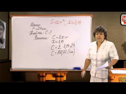 Математика 6 класс. МАСШТАБ. ДЛИНА ОКРУЖНОСТИ И ПЛОЩАДЬ КРУГА. ШАР.