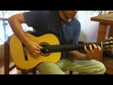 Stephen Hill spruce concert guitar 2014