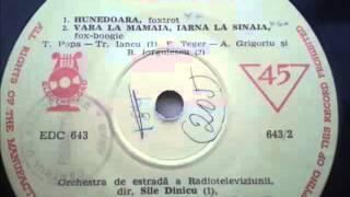 Horia Moculescu - Vara La Mamaia Iarna La Sinaia (196)