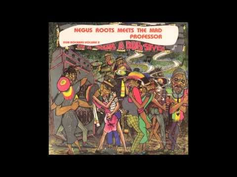 Negus Roots Meets The Mad Professor In A Rub A Dub Style