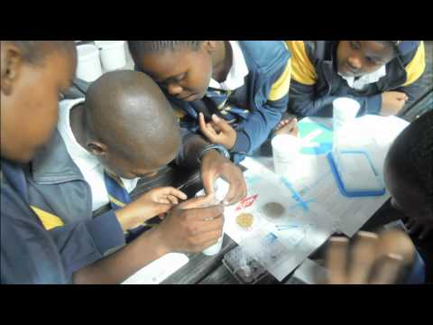 Global Water Experiment