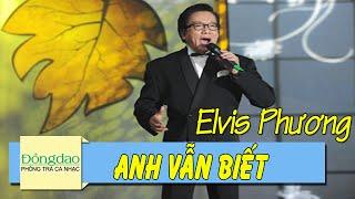 Anh Vẫn Biết (Et Pourtant) - Elvis Phương [Nhạc Pháp Lời Việt]