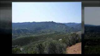 160 Acres Of Land For Sale In Shasta County - Platina, CA