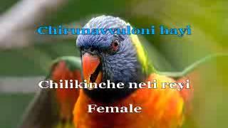 Chiru Navvu Loni Haayi - Karaoke Video