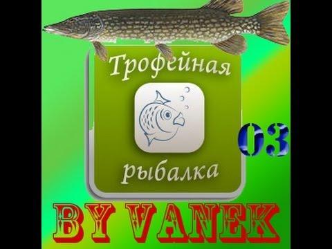 на что клюёт линь в трофейной рыбалке