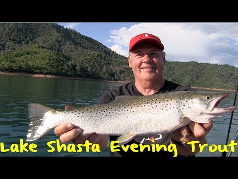 Lake Shasta Evening Trout Fishing