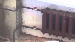 Двухтрубная вертикальная система отопления административного здания(Видео о том, что такое вертикальная двухтрубная система отопления. rssrv.ru., 2014-03-15T18:14:54.000Z)