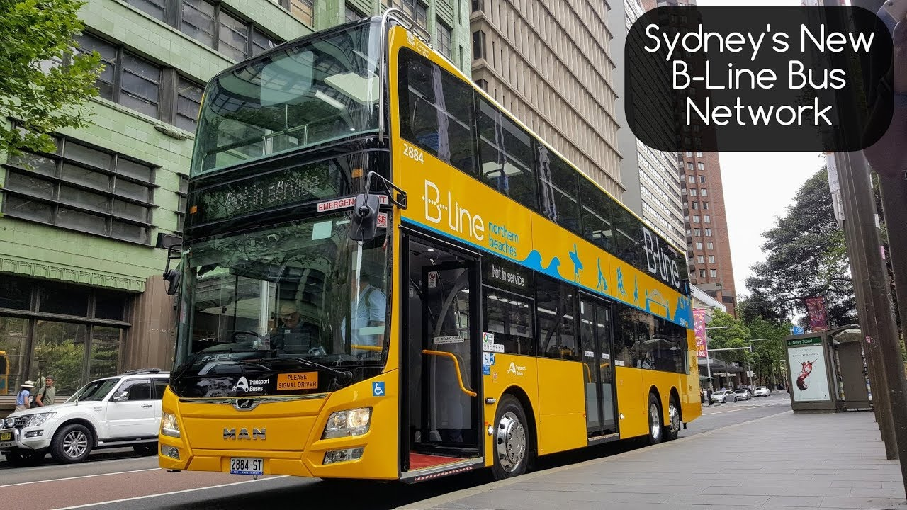 sydney trains vlogs: sydney's new b-line northern beaches bus