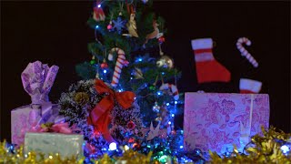 An attractive tree decorated with candy canes and jingles bells for Christmas celebrations