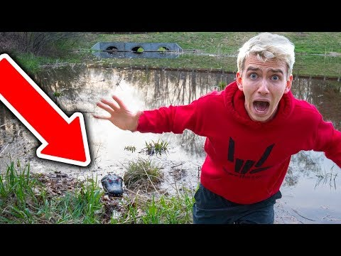 MONSTER IN POND!! (NEST FOUND)