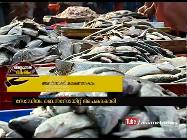 Sodium Bentonite used in Fish | Roving Reporter on Food Safety