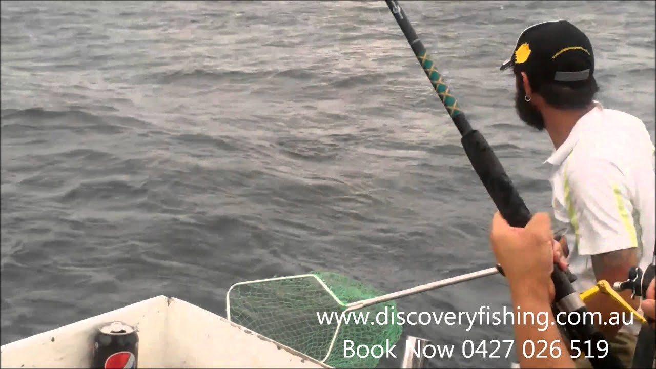 Gold coast fishing charters youtube for Gold coast fishing charters