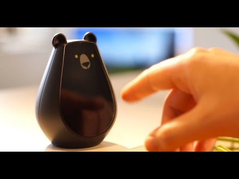 Bearbot A Universal Remote