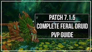 7.1.5 Feral Druid PvP Guide - Talents, Honor Talents, Artifact, Macros, Rotation & Abilities