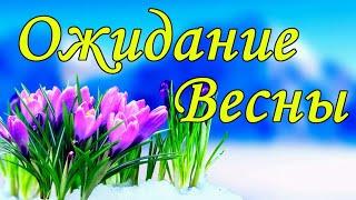Стихотворение Ожидание Весны . Красивые стихи о весне