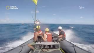 National Geographic - Непокорные океаны