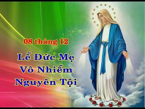 Suy niệm Lễ Đức Mẹ Vô Nhiễm Nguyên Tội_Lm Trầm Phúc