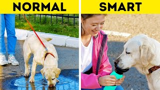 NORMAL PET OWNER vs SMART PET OWNER    Amazing gadgets, hacks and tricks by 5Minute Crafts LIKE